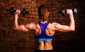 4組動作 強化你的背部肌群