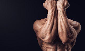 肌肉大等於肌力大?