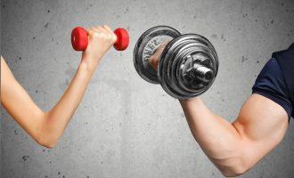淺談增肌減脂的訓練模式(增肌篇)