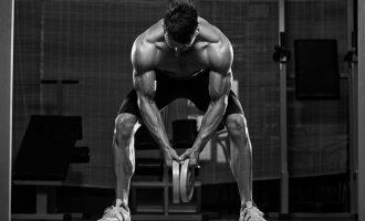 鍛鍊鋼鐵意志:德國壯漢訓練法