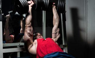 分開肌群vs.全身訓練哪個好?